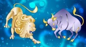 Как совместимы телец и лев